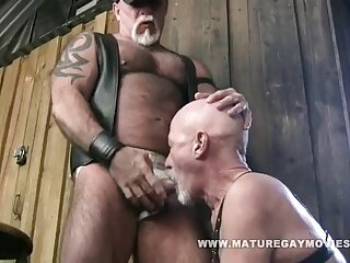 Sexy marrón videos xxx caseros gratis atado a nalgadas